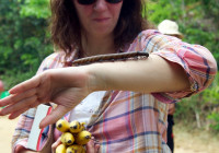 Suzanne with a huge millipede.