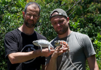 Michel, Adrien and two panther chameleons